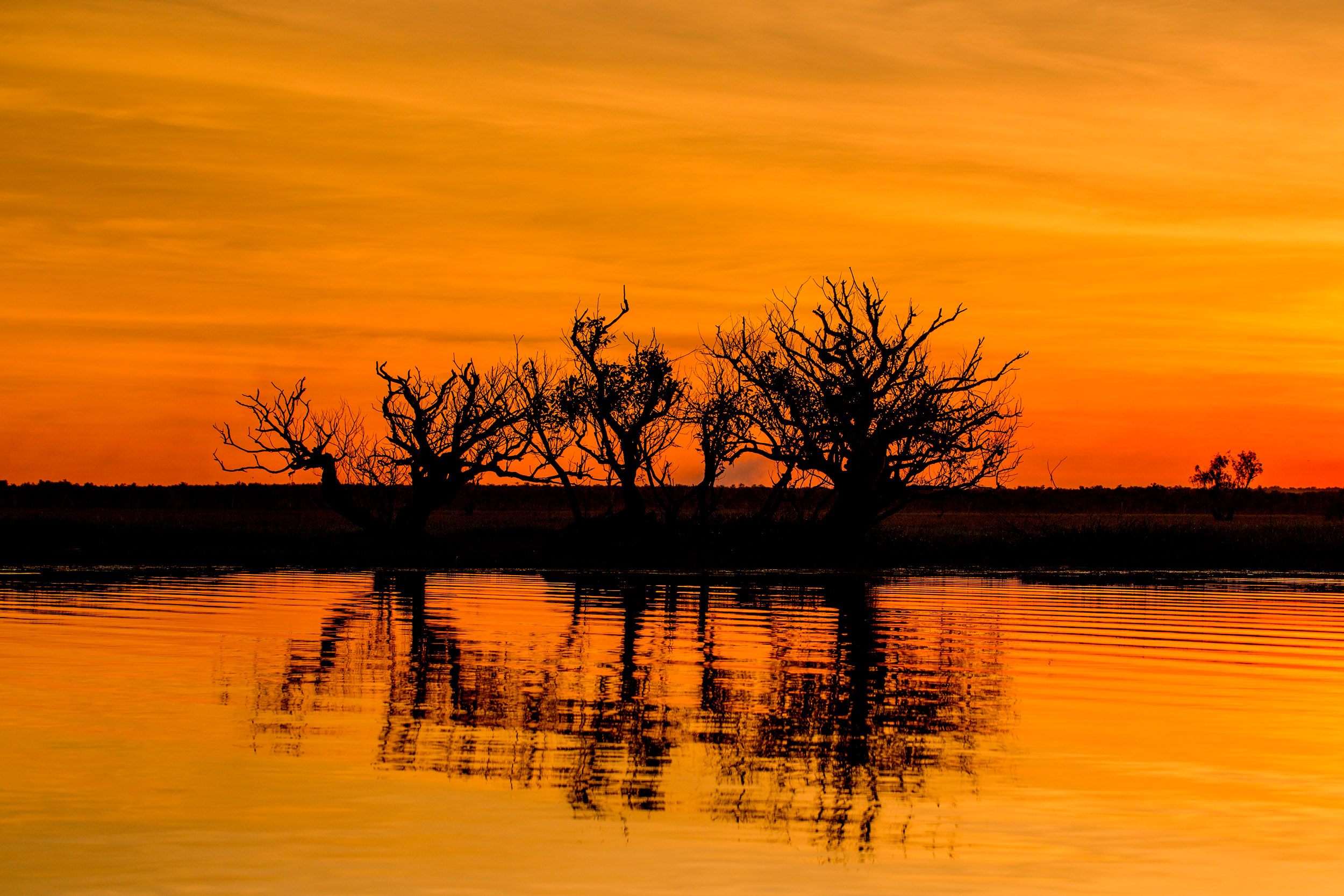 sunset-wetlands-NT.jpg