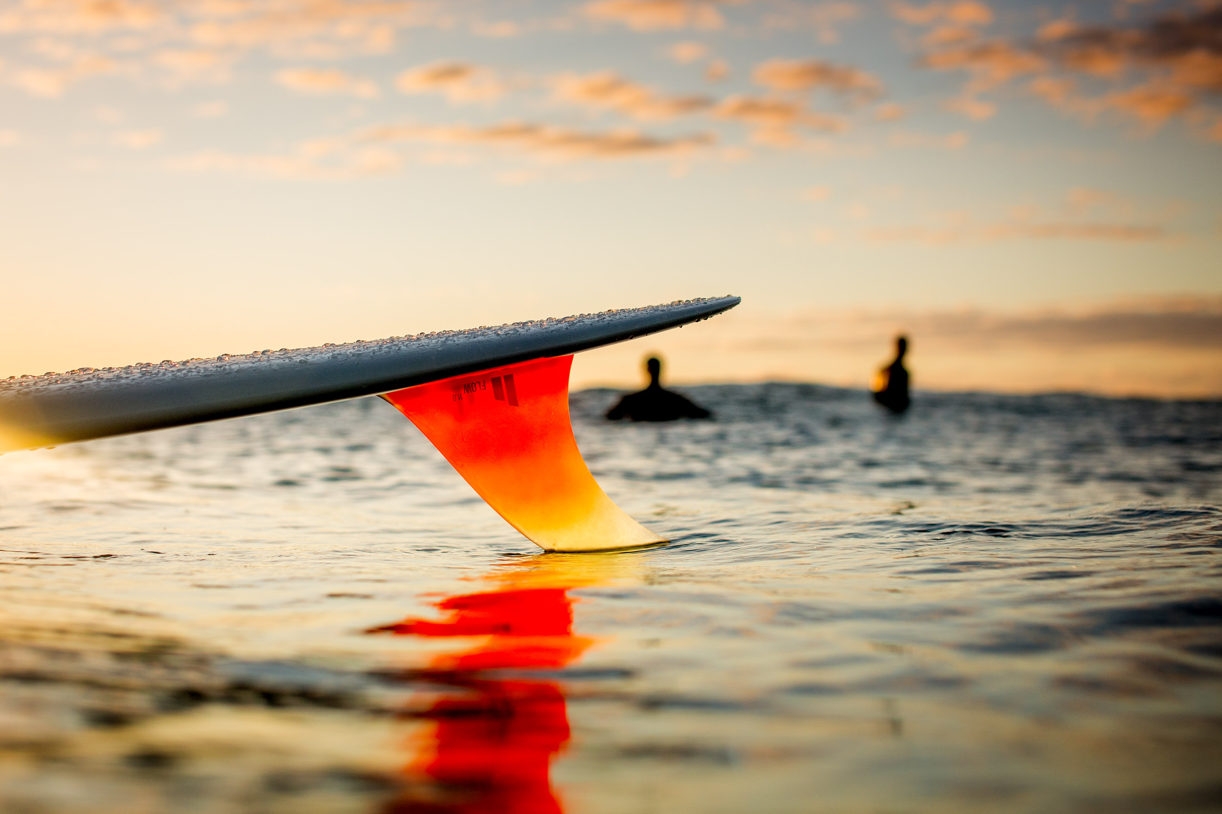 single-fin-surflifestyle-photoshoot-mid-north-coast.jpg