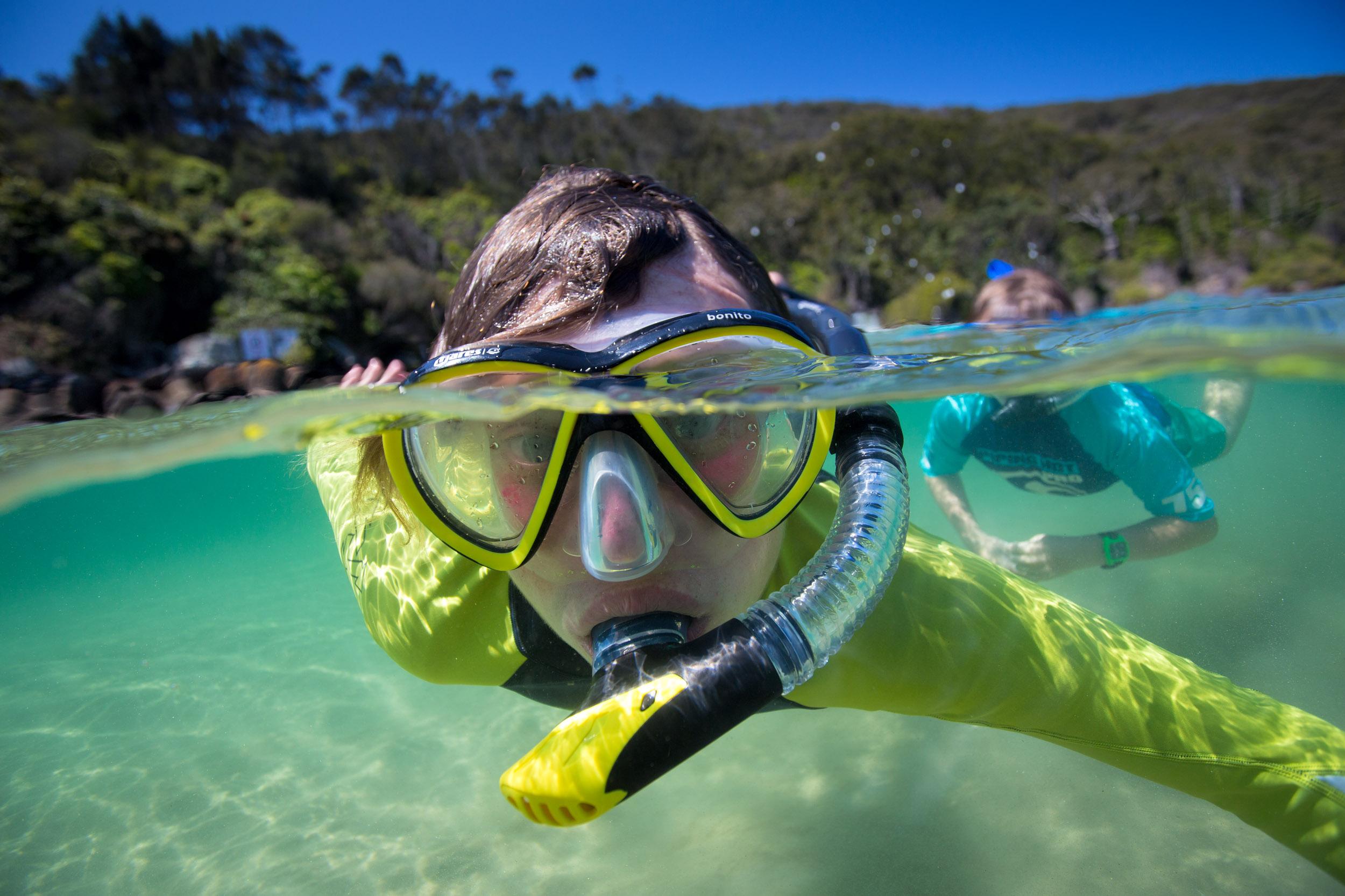 snorkelling-mid-north-coast.jpg