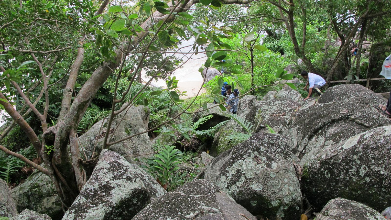 Trias Tanjungpandan Granite at Batu Pulas
