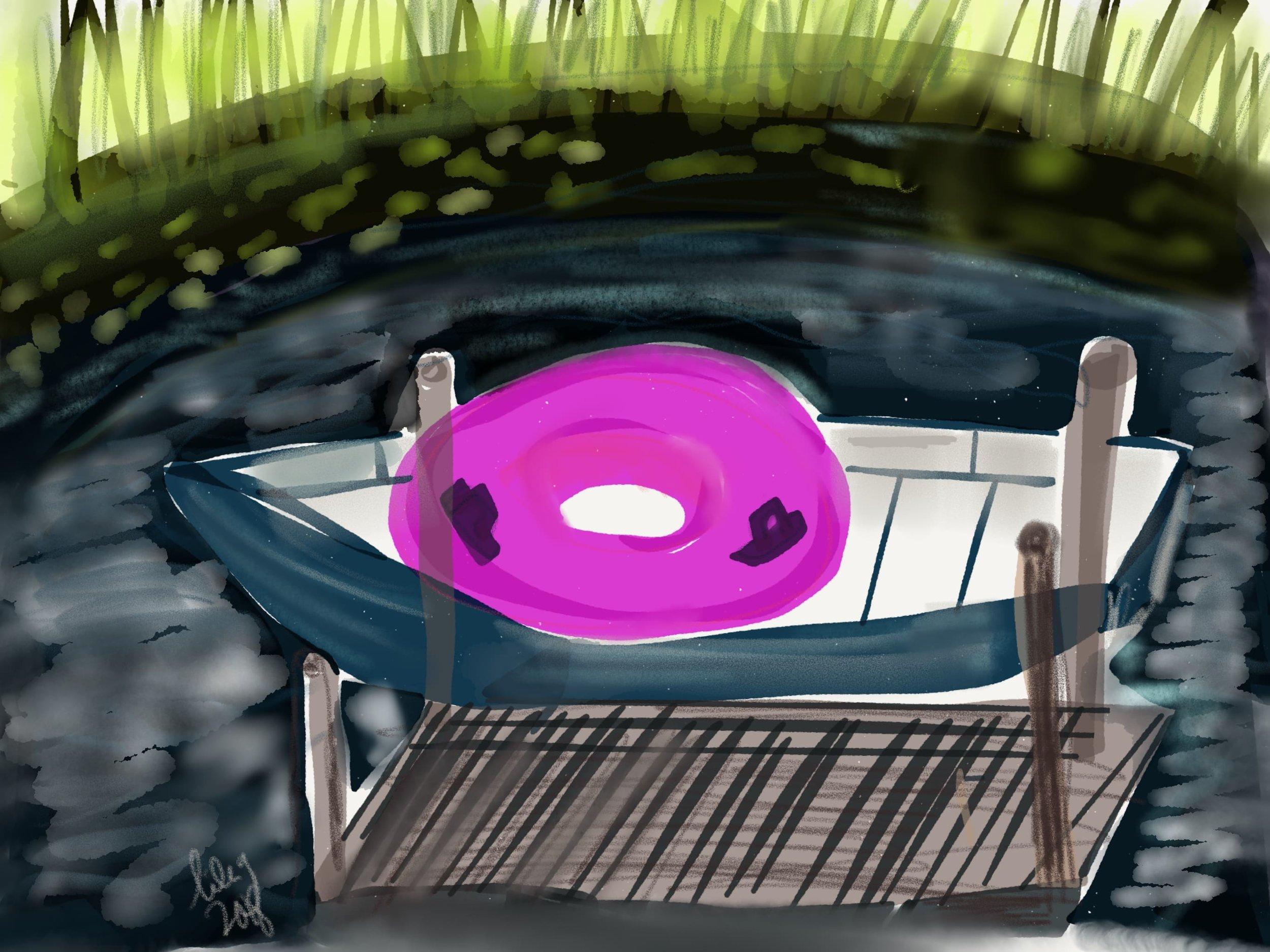 2018-rowboat-n-pink-donut-nomi.jpg