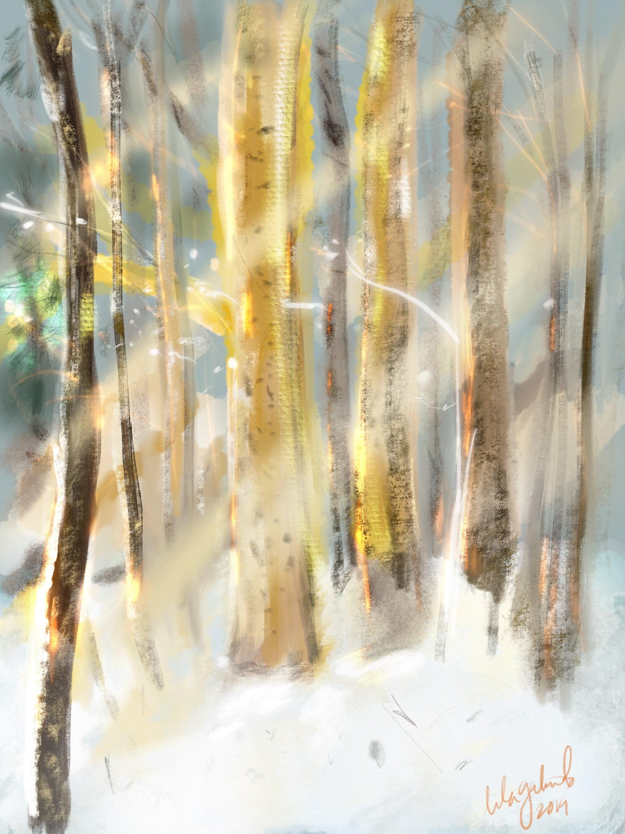 2019-jan-winter-trees.jpg