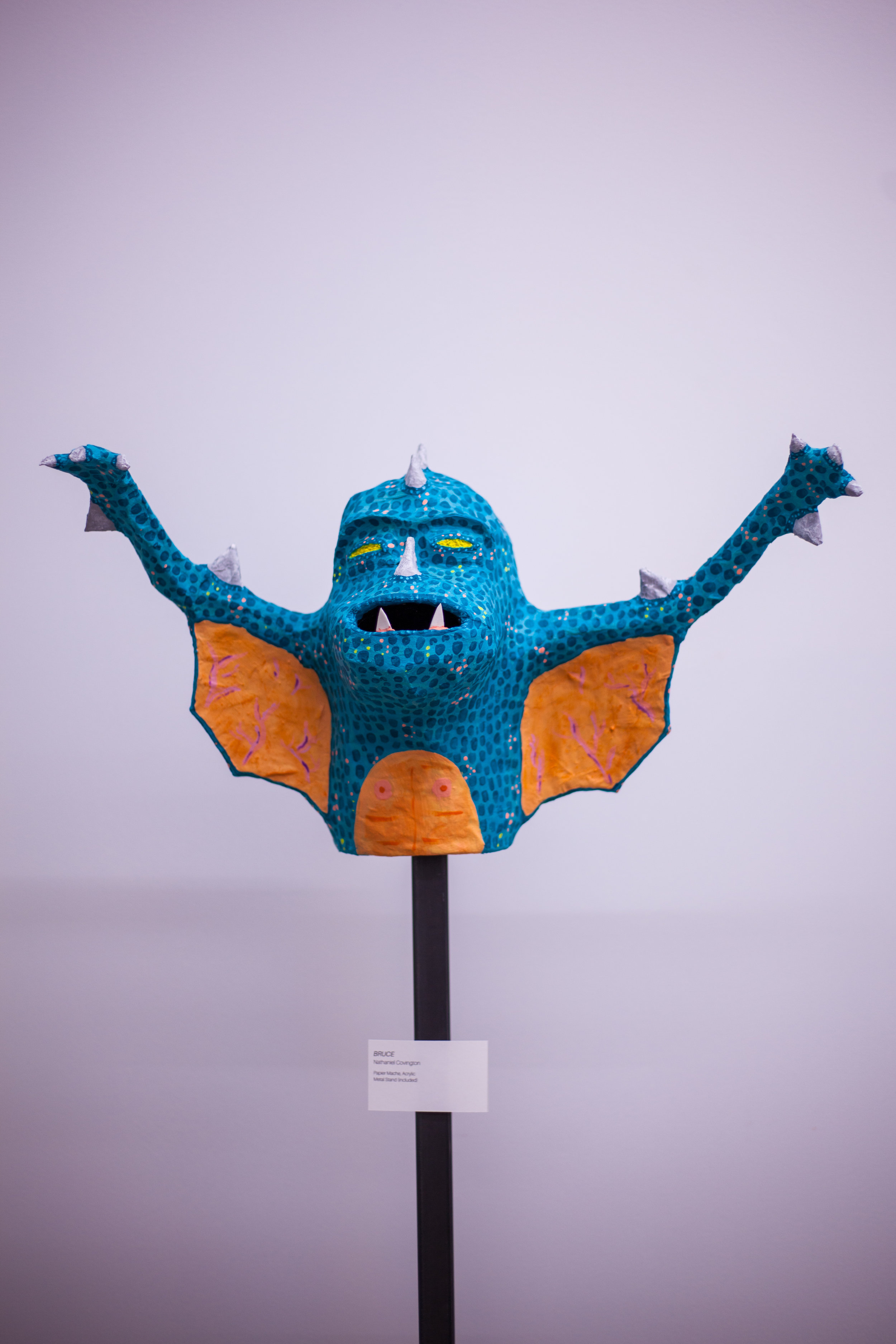 Bruce Bat Boy