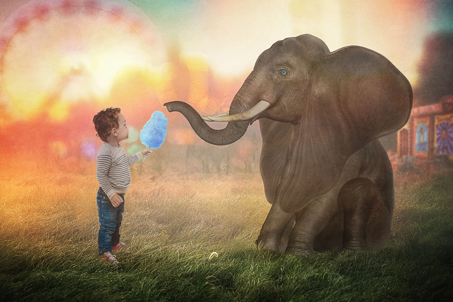 little boy with elephant eating cotton candy storybook composite