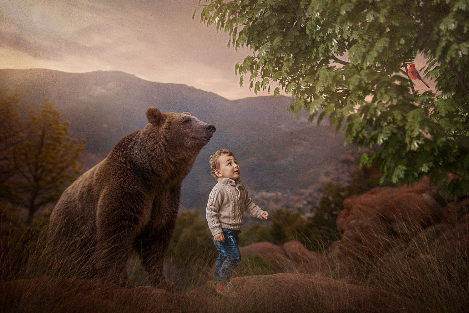 little boy with brown bear watching a red bird storybook composite