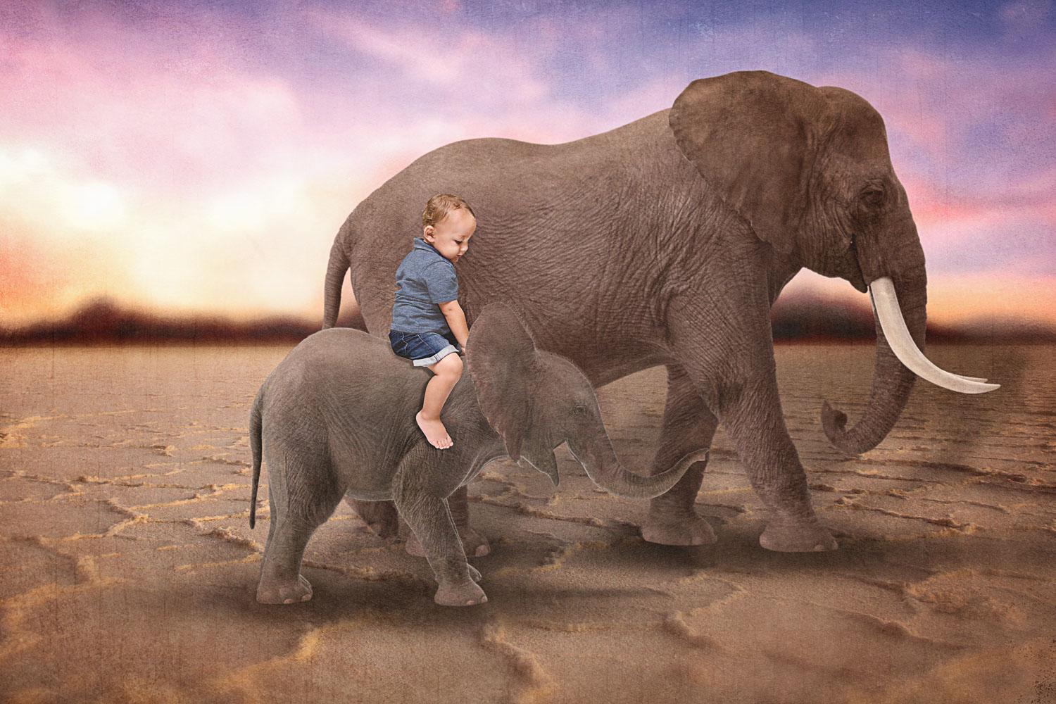 Little boy riding baby elephant next to mama storybook composite