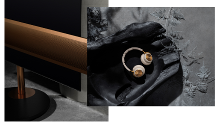 Bang and Olufsen Bronze Collection 2.png