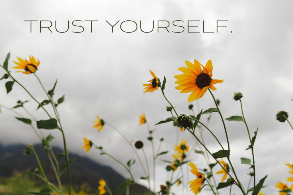 IMG_0171-trust2-1024x683.jpg