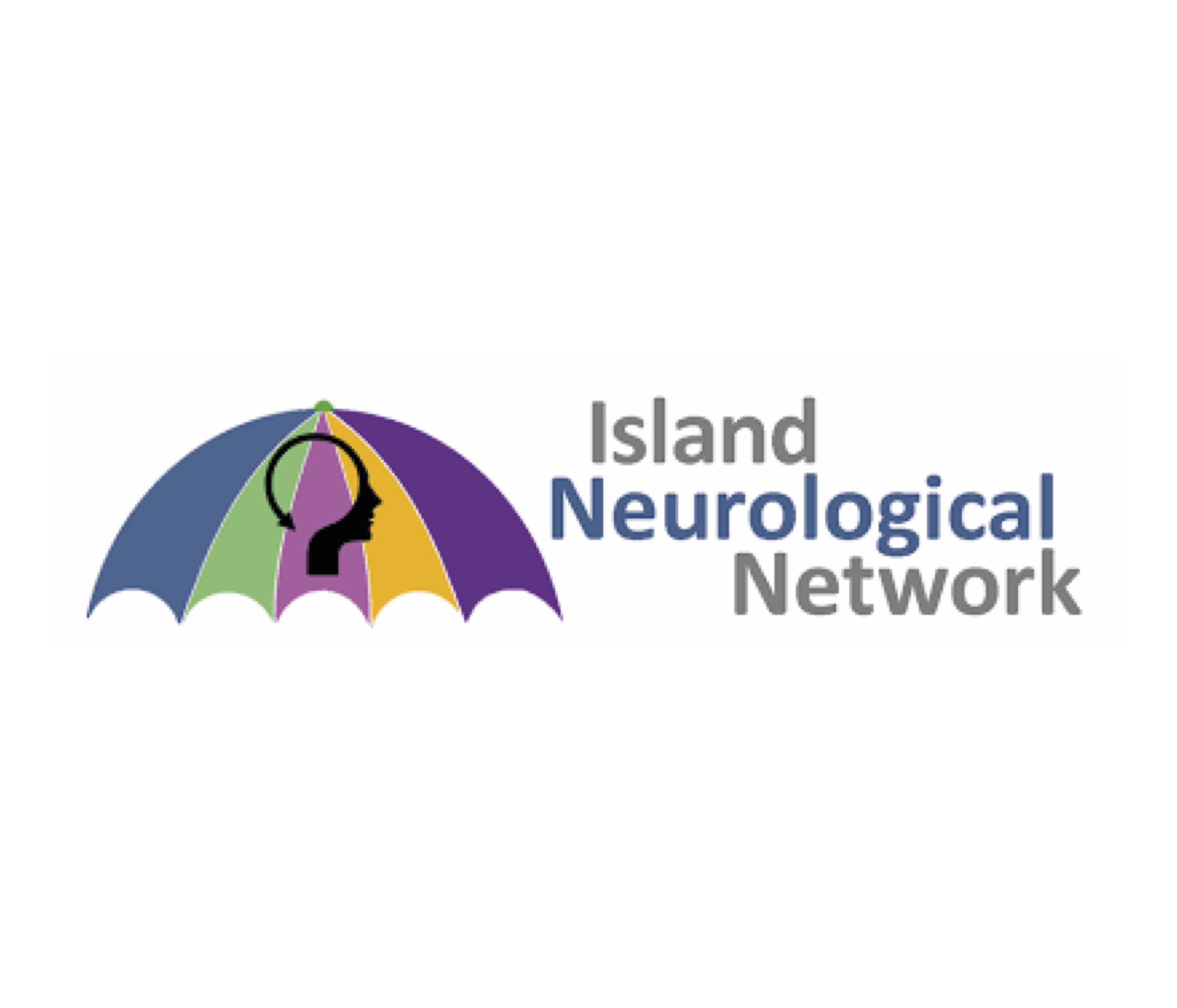 15 island neurological network.jpg
