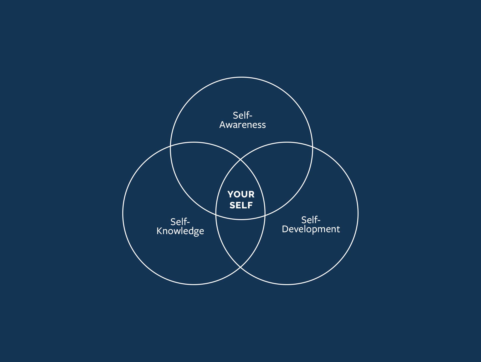 Your Self Diagram.jpg