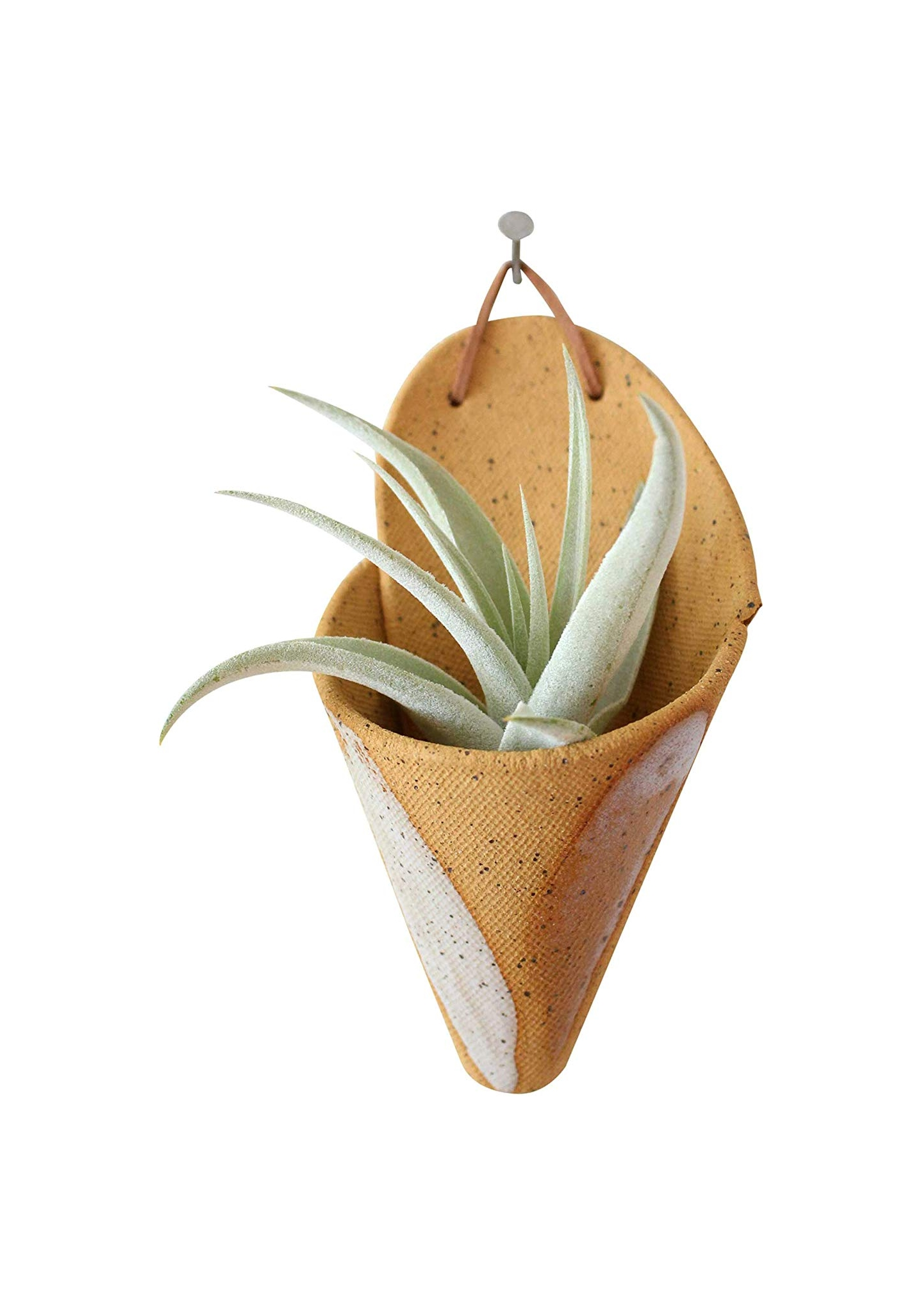 RETRO CERAMIC WALL MOUNTS & AIR PLANTS - GIVE THE PERFECT GIFT