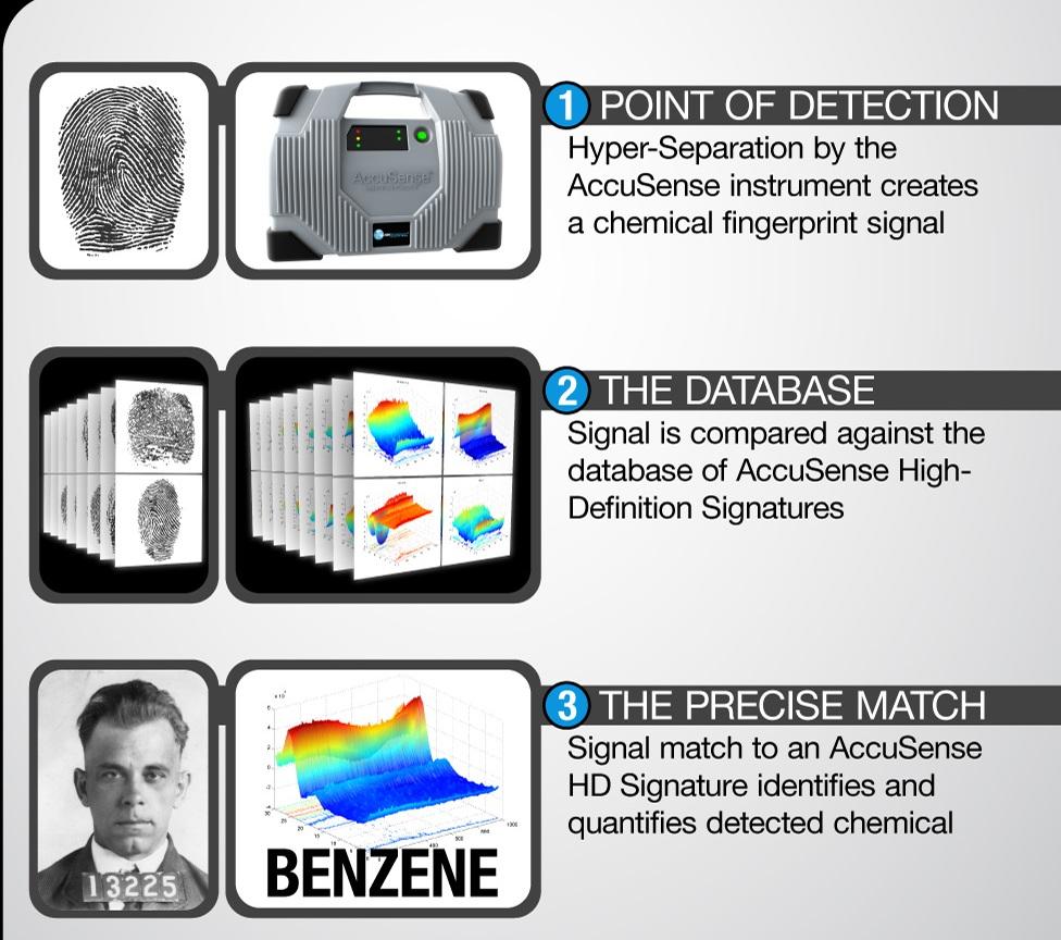 fingerprints2b.jpg