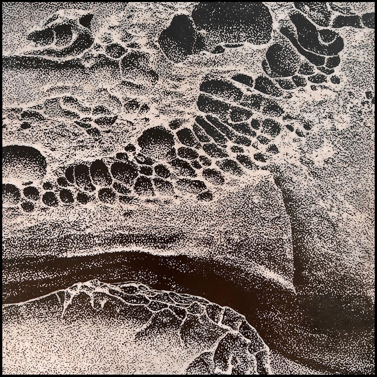 """Salt Point Tafoni #5"", champlevé enamel on copper, 8"" x 8"""