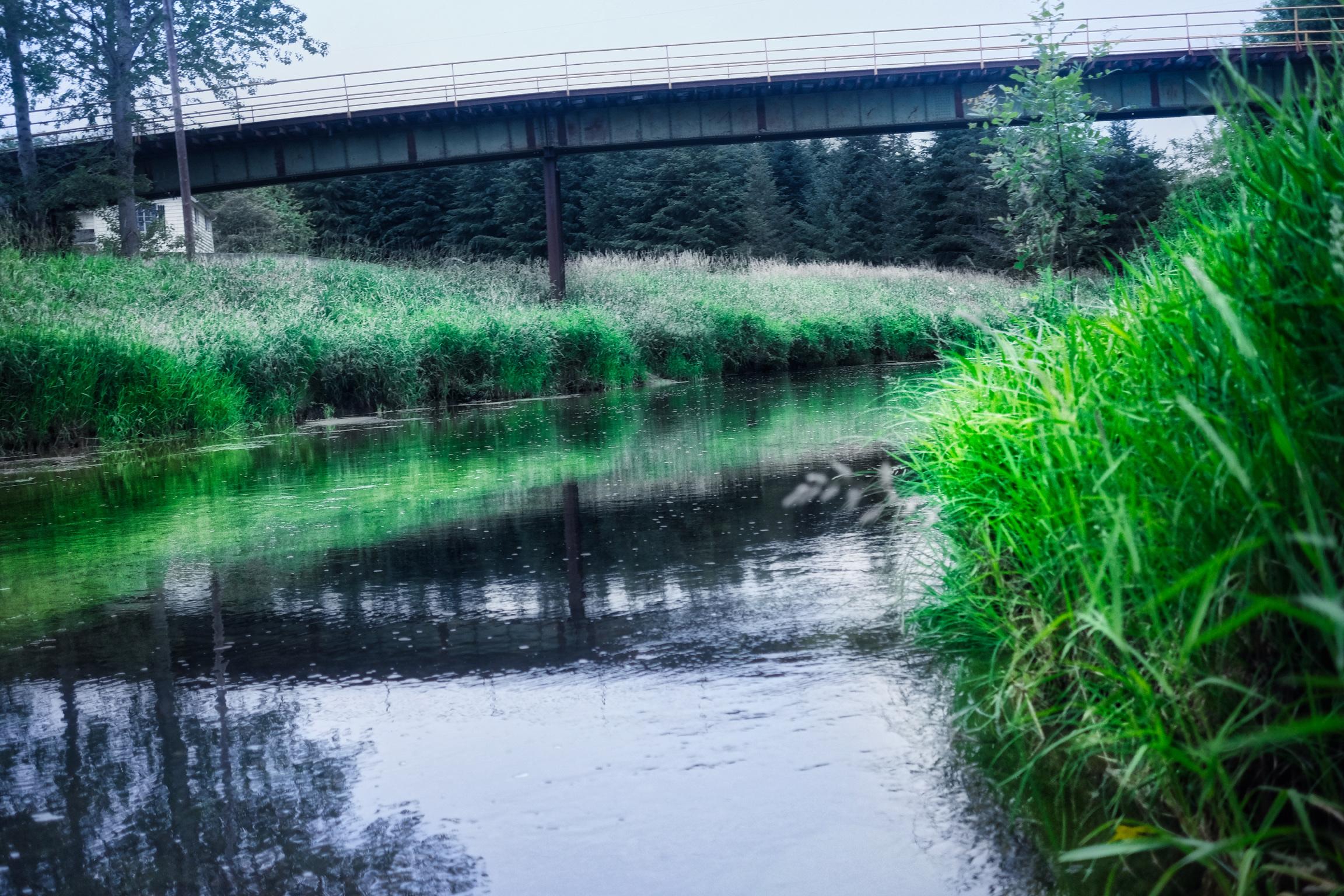 River at Vernonia-1.jpg