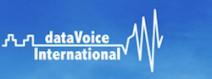 Datavoice_Logo_partner-e1398447475622.jpg
