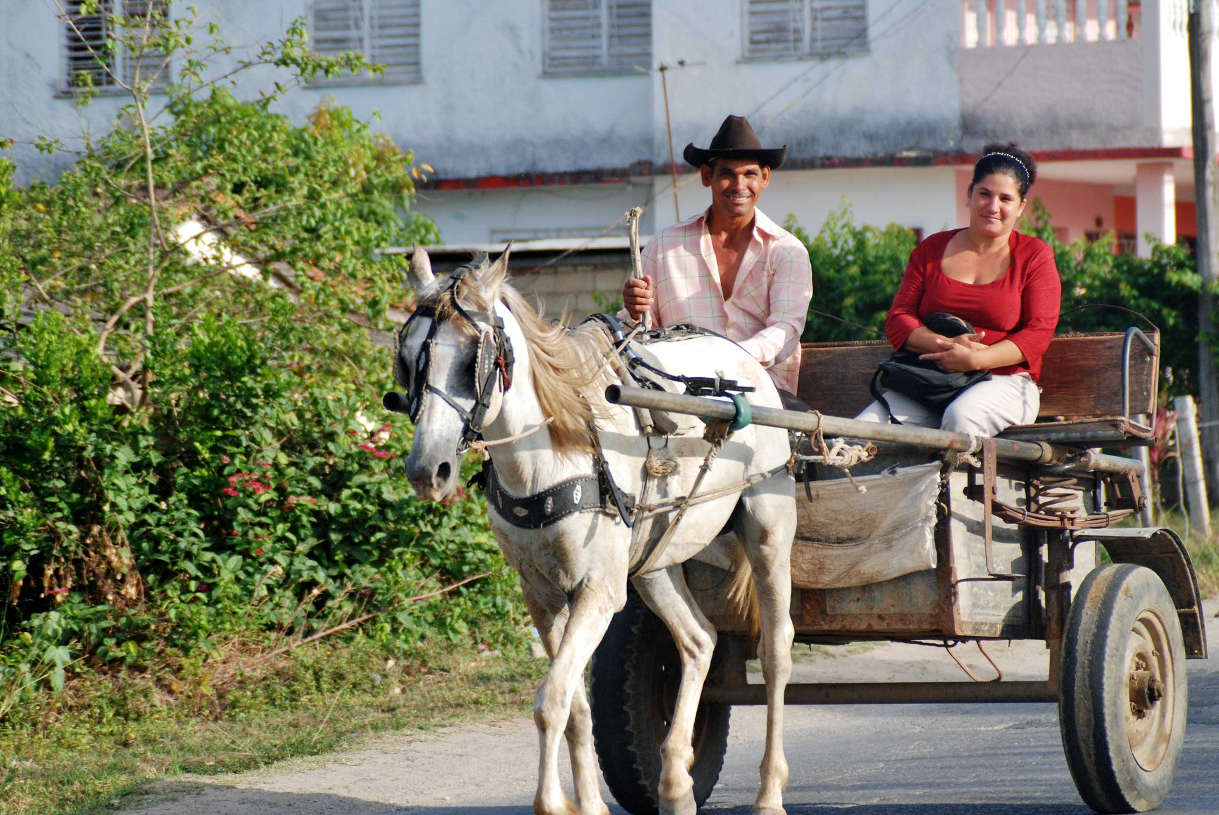 Cuba-horse-carriage.JPG