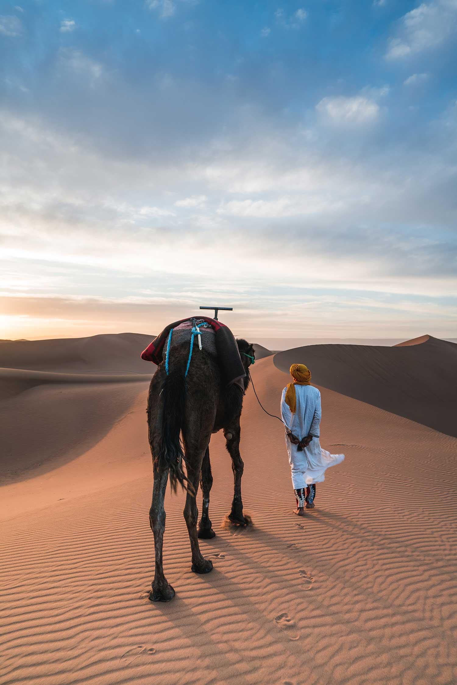 Morocco-desert-camel-walk-unsplash.jpg