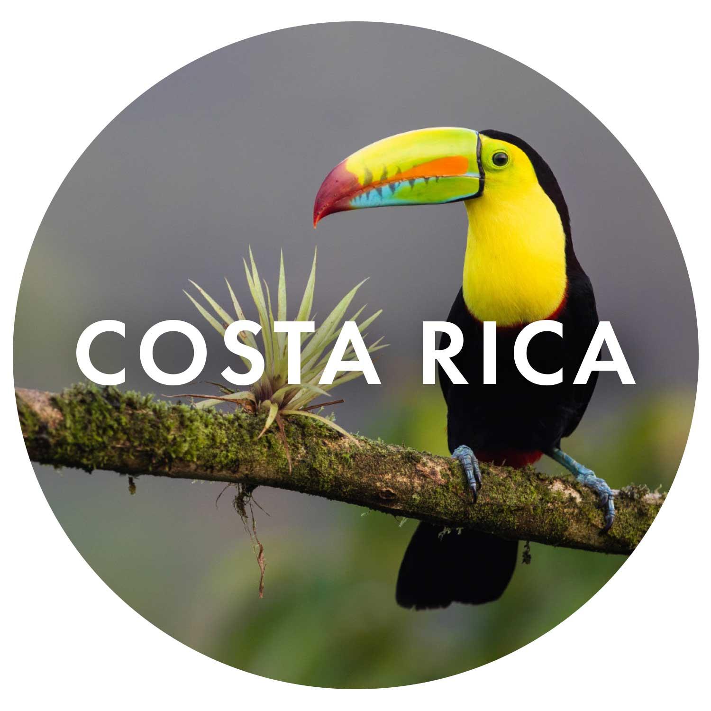 ICONcostarica.jpg