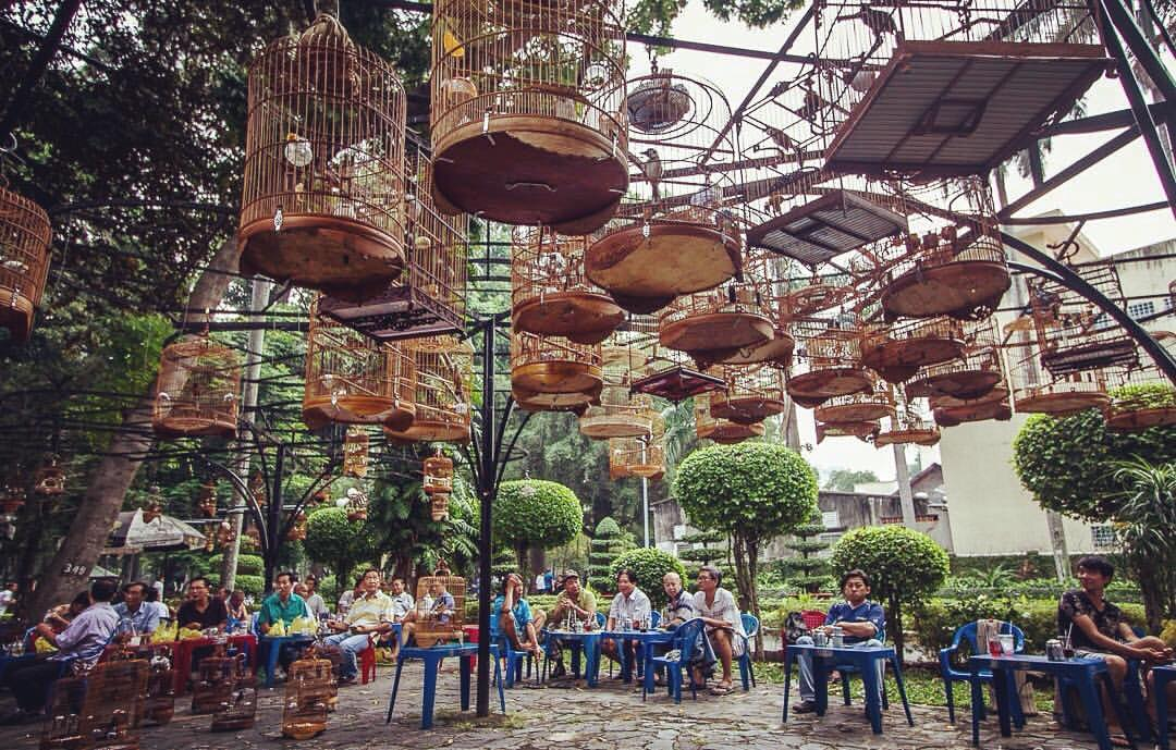 Drinking coffee with... birds at this unique Bird Cafe in Saigon.jpg