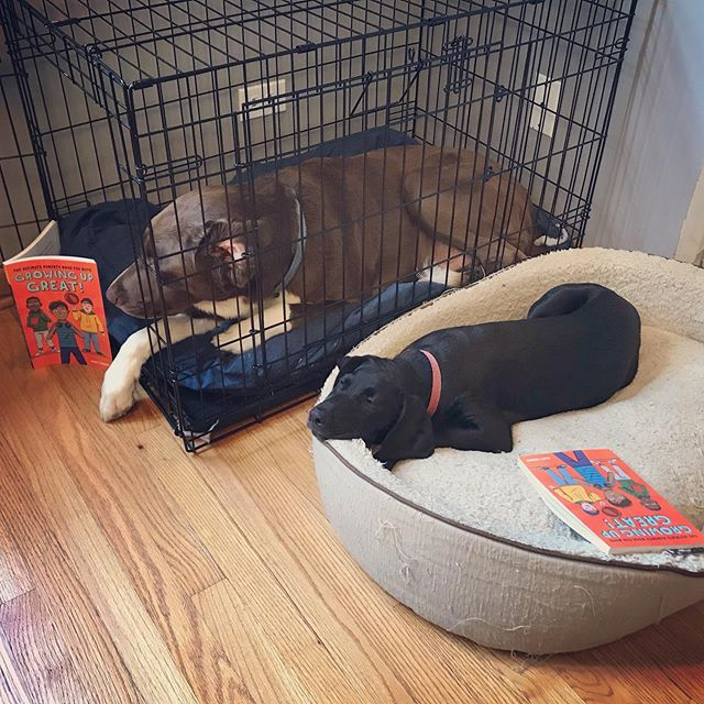 Looks like one just finished the chapter on sleep habits, and the other is practicing the chapter on privacy and personal space. 😴🤐 . 📙#GrowingUpGreat Amazon preorder link in bio.