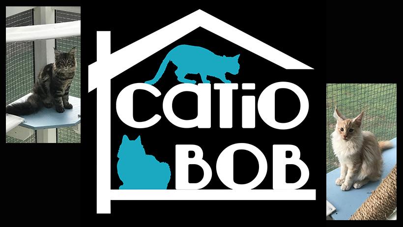 Catio Bob