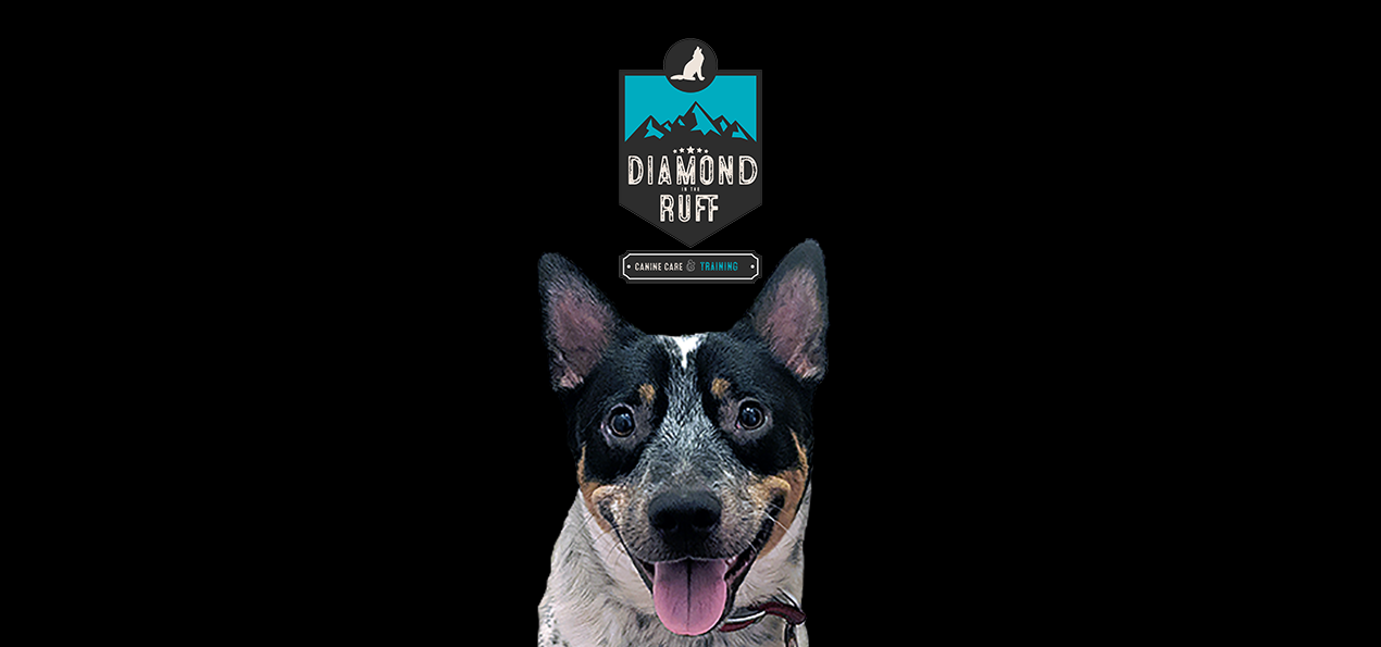 Diamond In The Ruff Canine Care
