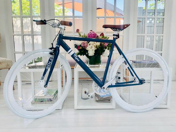 Capri-Bike-1.jpg