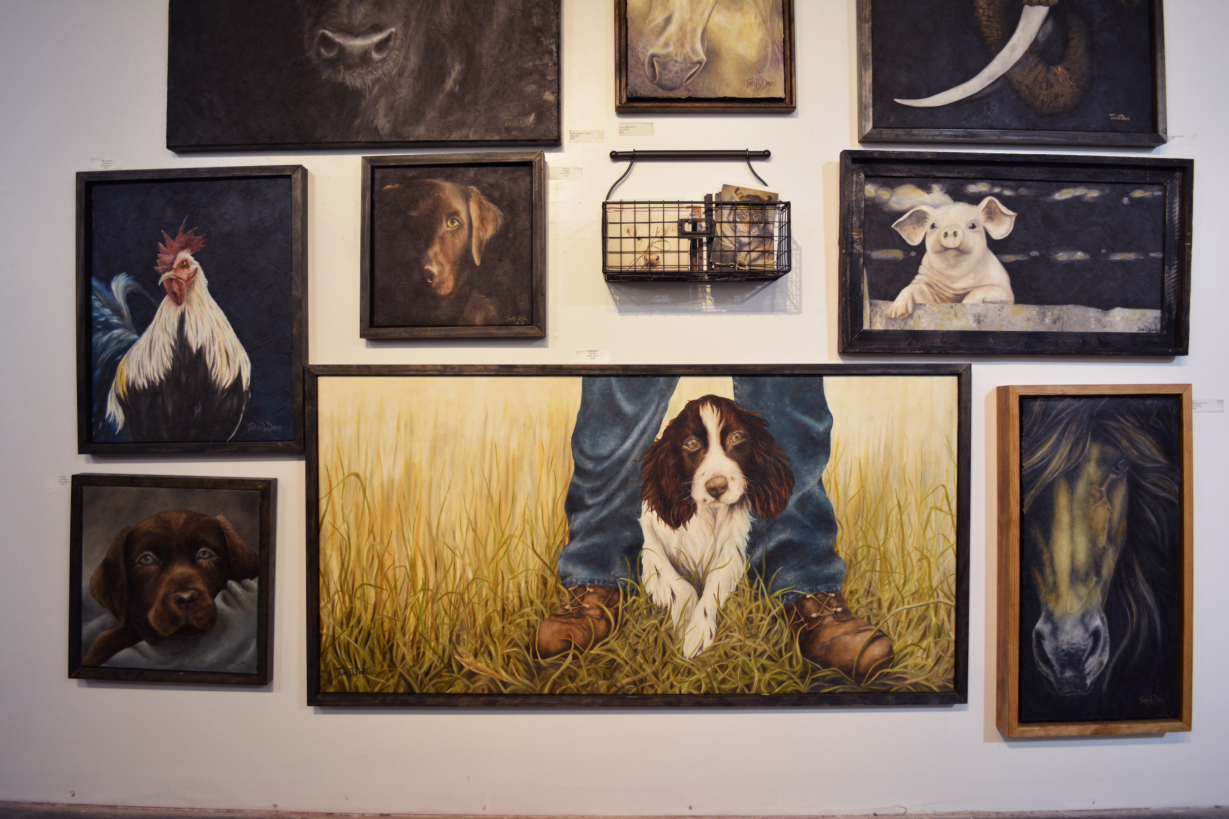Tara Davis - Rustic farm-animals and pets captured in paintings that have a glowing presence, oil on canvas.
