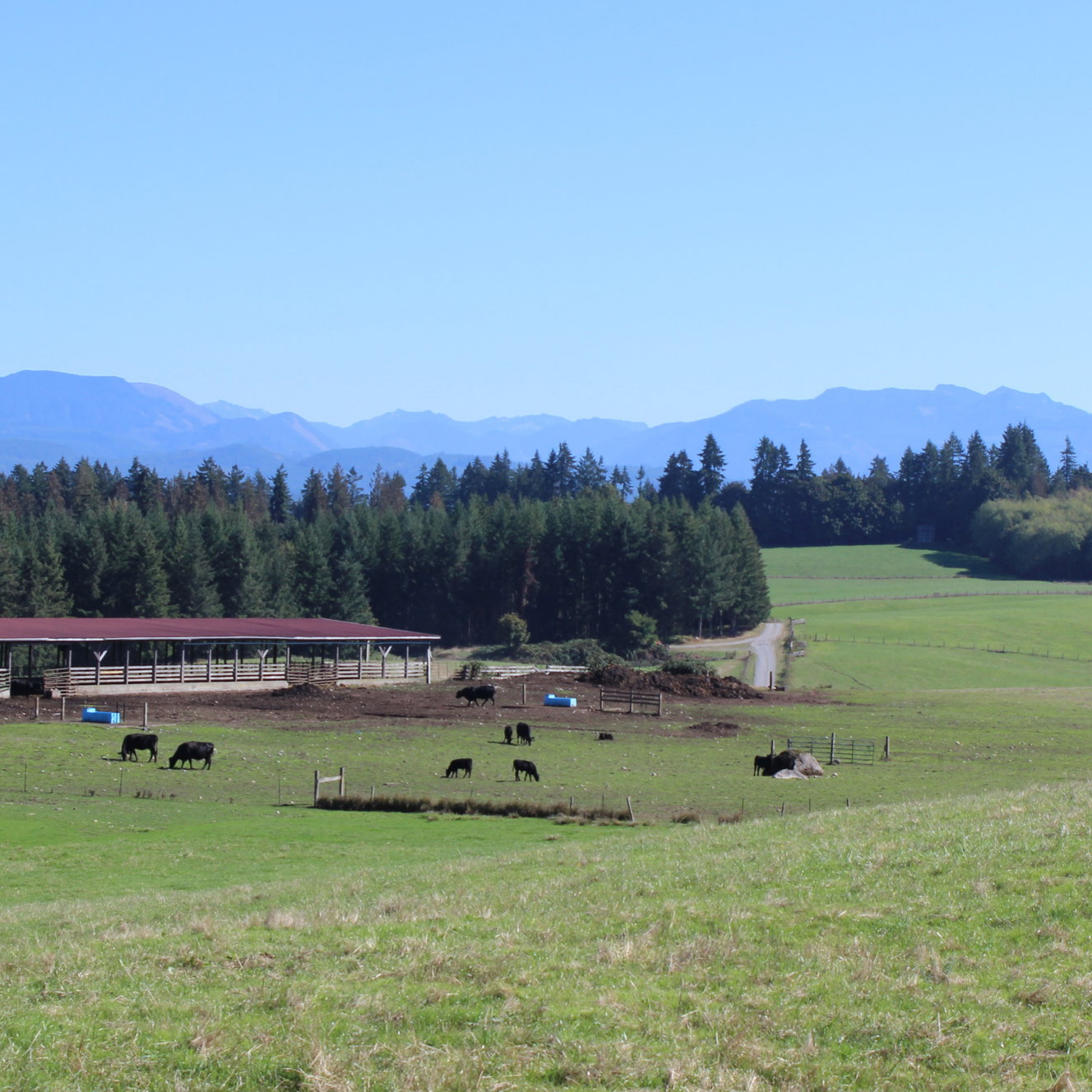 FIELD TRIP OPTION A: ON-FARM LIVESTOCK, SLAUGHTER, WRAP AND PACK - Jubilee Farm, Carnation Farms, Falling River Meats