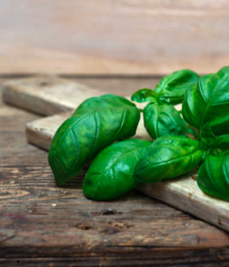 Basil - There are many varieties of basil, the type used commonly as a flavor is typically called sweet basil (or Genovese basil), as opposed to Thai basil,lemon basil and holy basil.In general, it is added at the last moment, as cooking quickly destroys the flavor. The dried herb also loses most of its flavor.Basil pairs exquisitely with lemon, tomato and garlic. Sweet basil is an essential ingredient in Italian and Mediterranean cuisine and loves being added to pasta, pizza, creamy sauces, dressings, soups, salads and olive oil. Pair basil with chicken, beef, tomatoes, eggs, chives, dill, oregano, rosemary, thyme, pepper and sea salt.