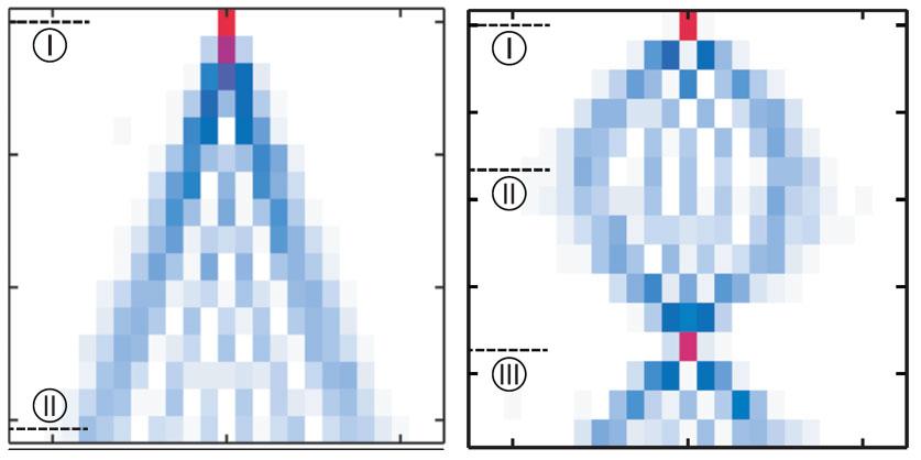 quantum-walk+bloch-oscillation.jpg