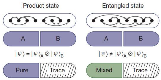 entanglement-entropy.jpg
