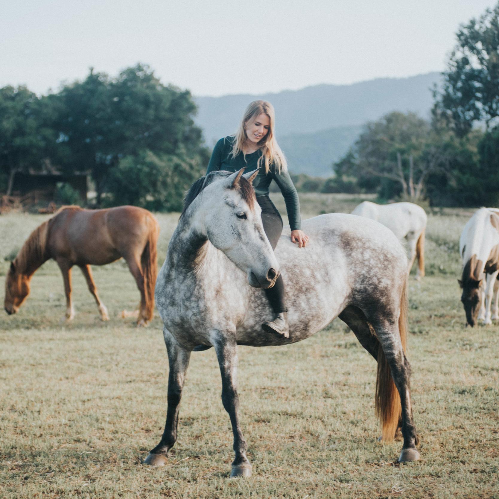Mosie Trewhitt - Liberty Horsemanship & Voices of the Herd
