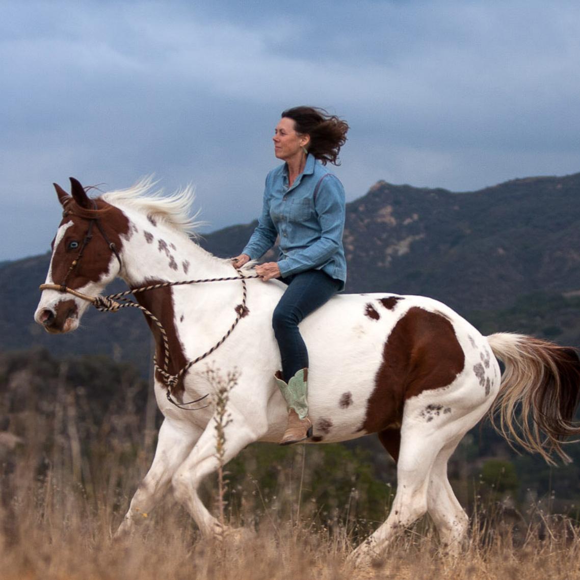 Cassandra Ogier - The Reflective Horse