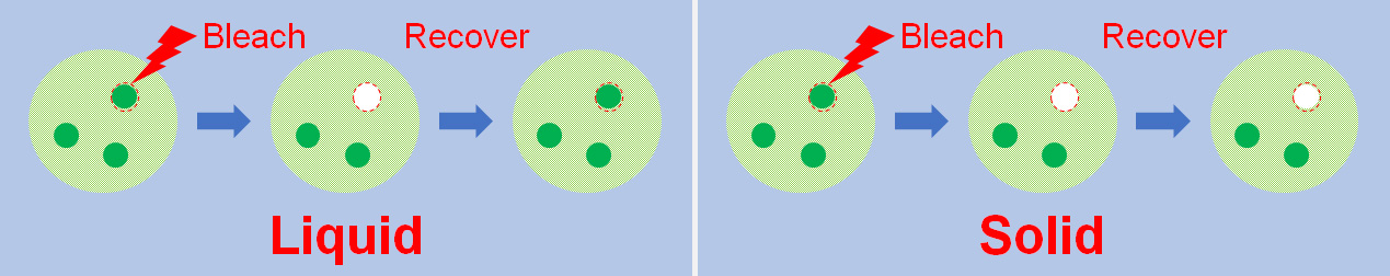 Using fluorescent recovery after photobleaching (FRAP) to distinguish a liquid condensate (the green circle surrounded by red spotted lines, left) from a solid aggregate (right).