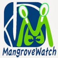 Mangrove Watch 1.jpg