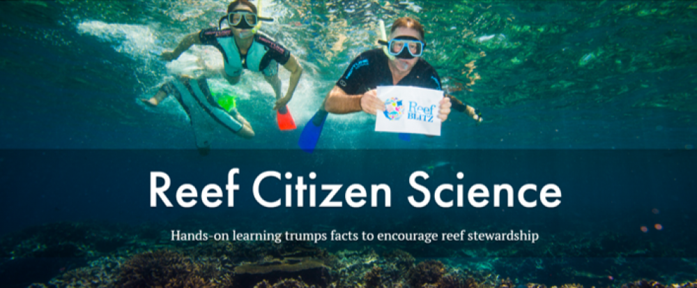 reef cit sci study pic.png
