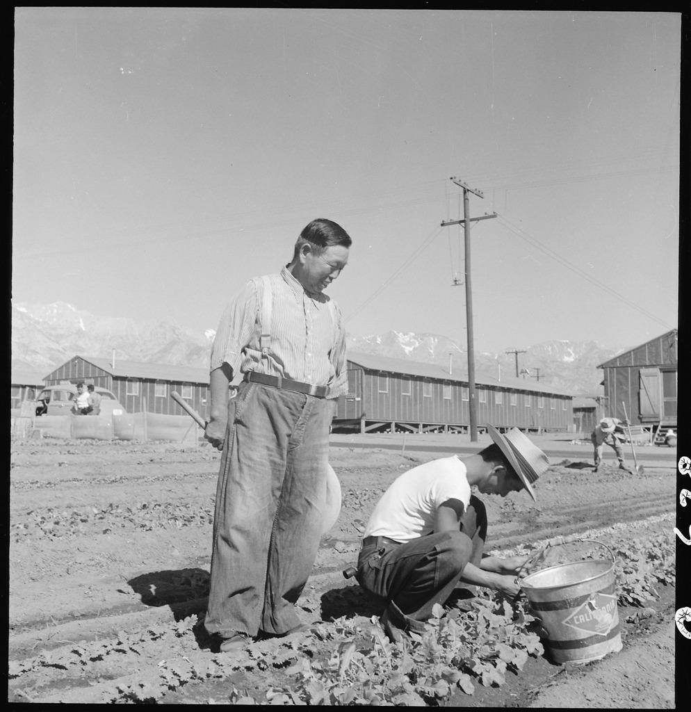 japanese americans working in garden.jpg