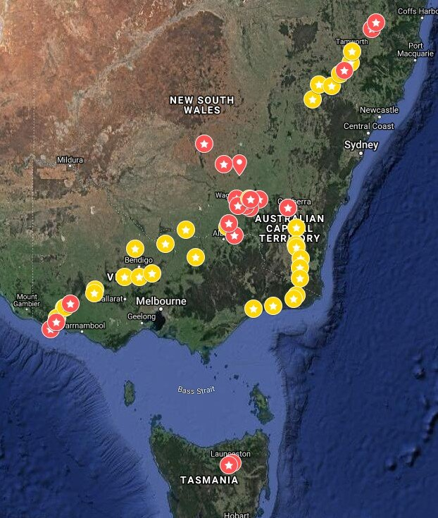 Monitoring sites across Australia. Red stars are intensive monitoring sites that will be regularly monitored over the next 12-24 months. Yellow stars are less intensive monitoring sites including reports made via the MyDungBeetle Reporter app.