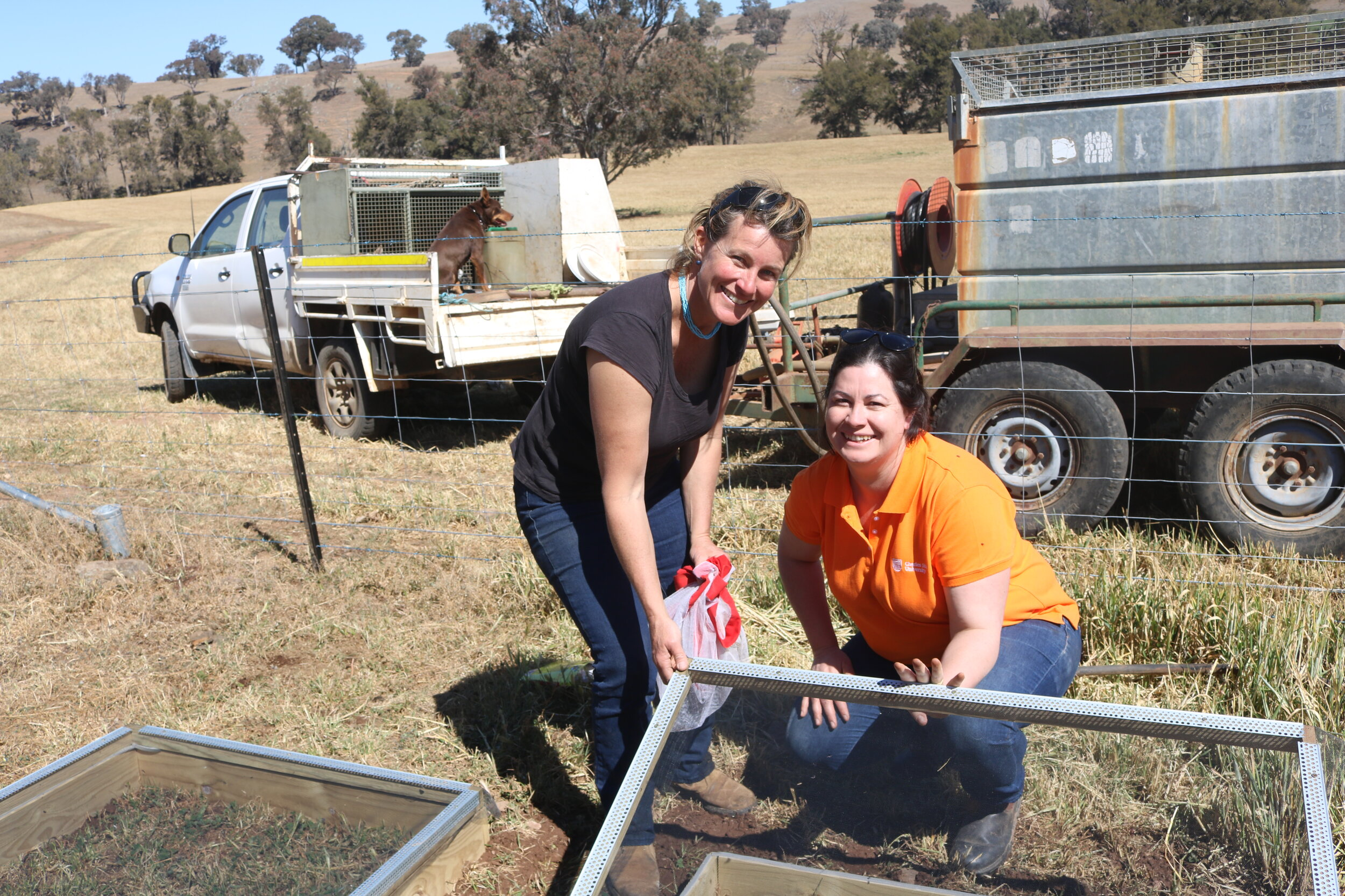 Landcare coordinator and producer Sally Kirby and DBEE's Annie Johnson setting up an on-farm dung beetle nursery on Sally's property at Molong, NSW