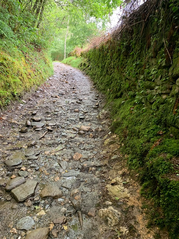 Rocky path 5.jpg