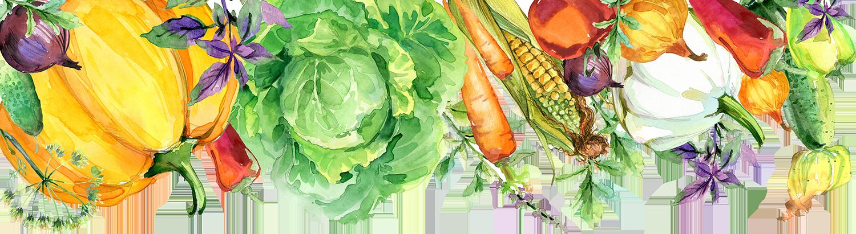 veggie border png.png