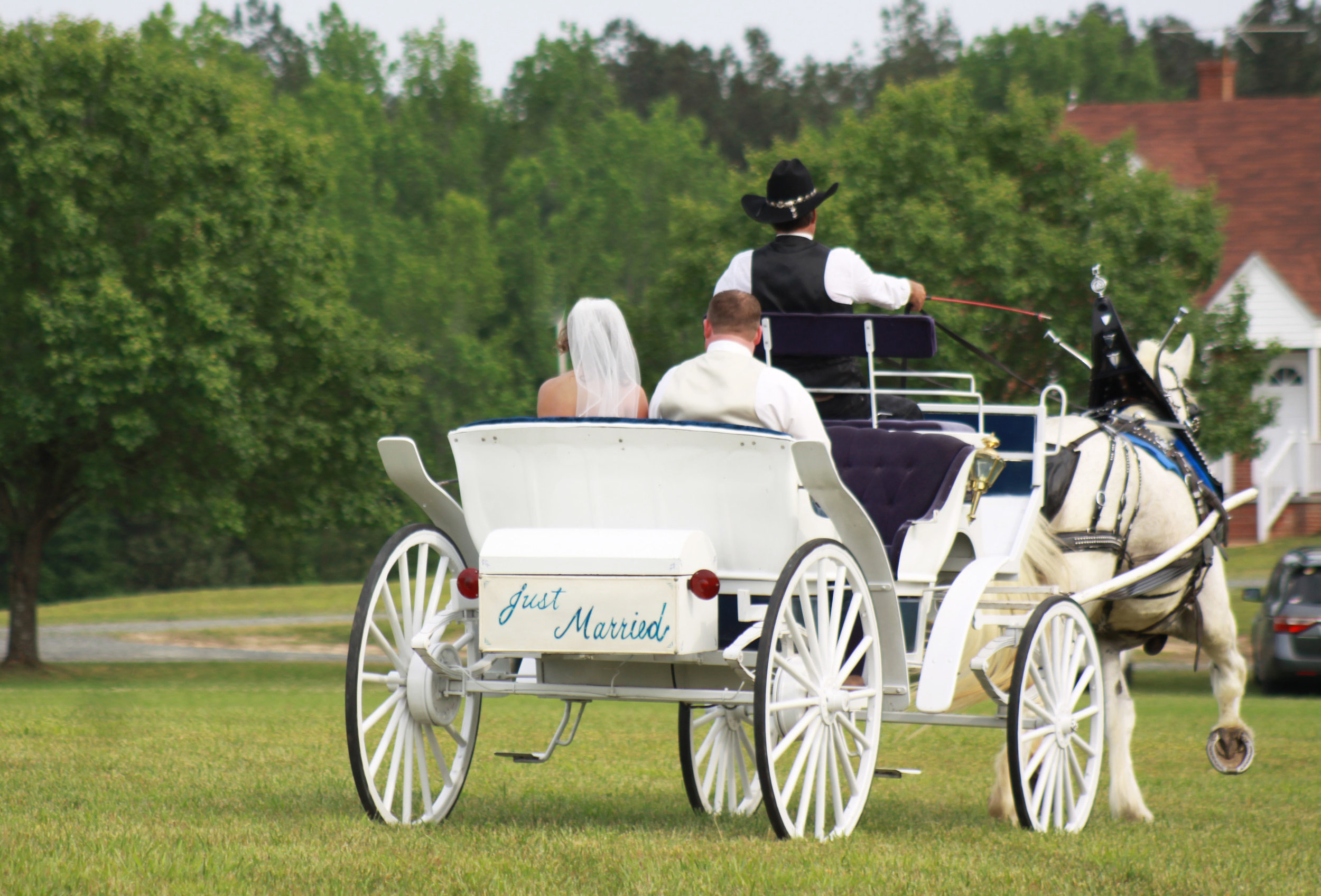 just married carriage.JPG