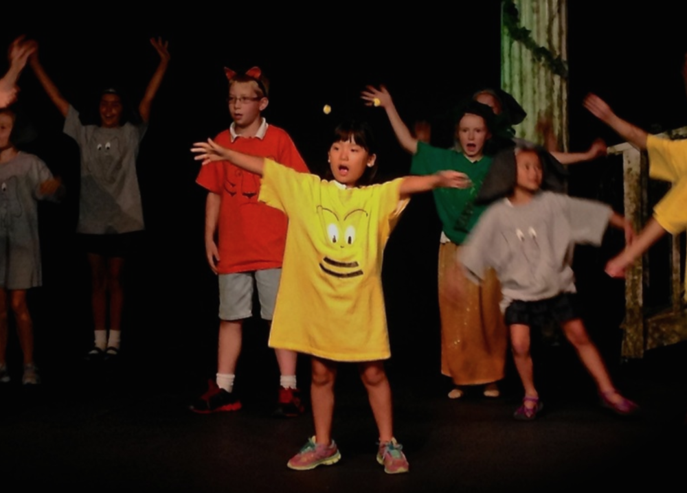 choreographer - Children's Music WorkshopSt. Joseph & Benton Harbor, MI