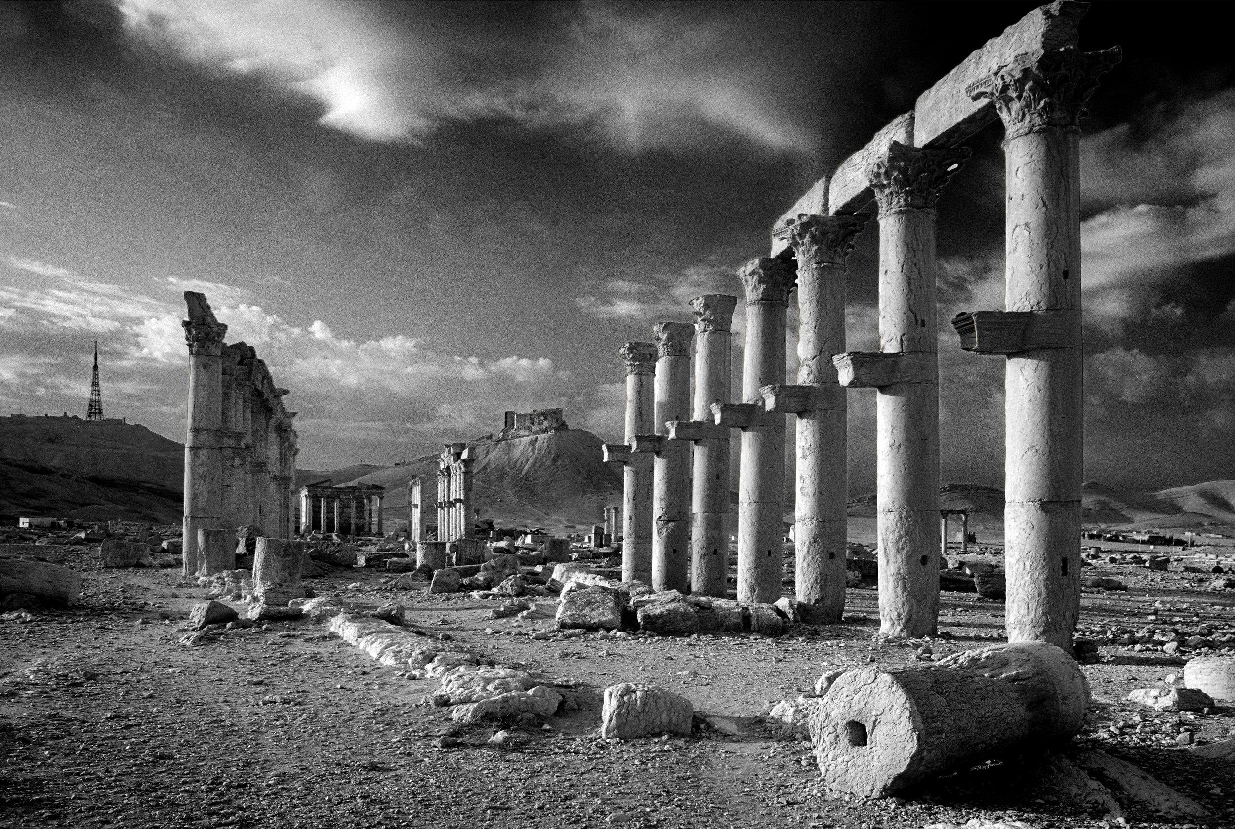 Palmyra ©Dave Thomas