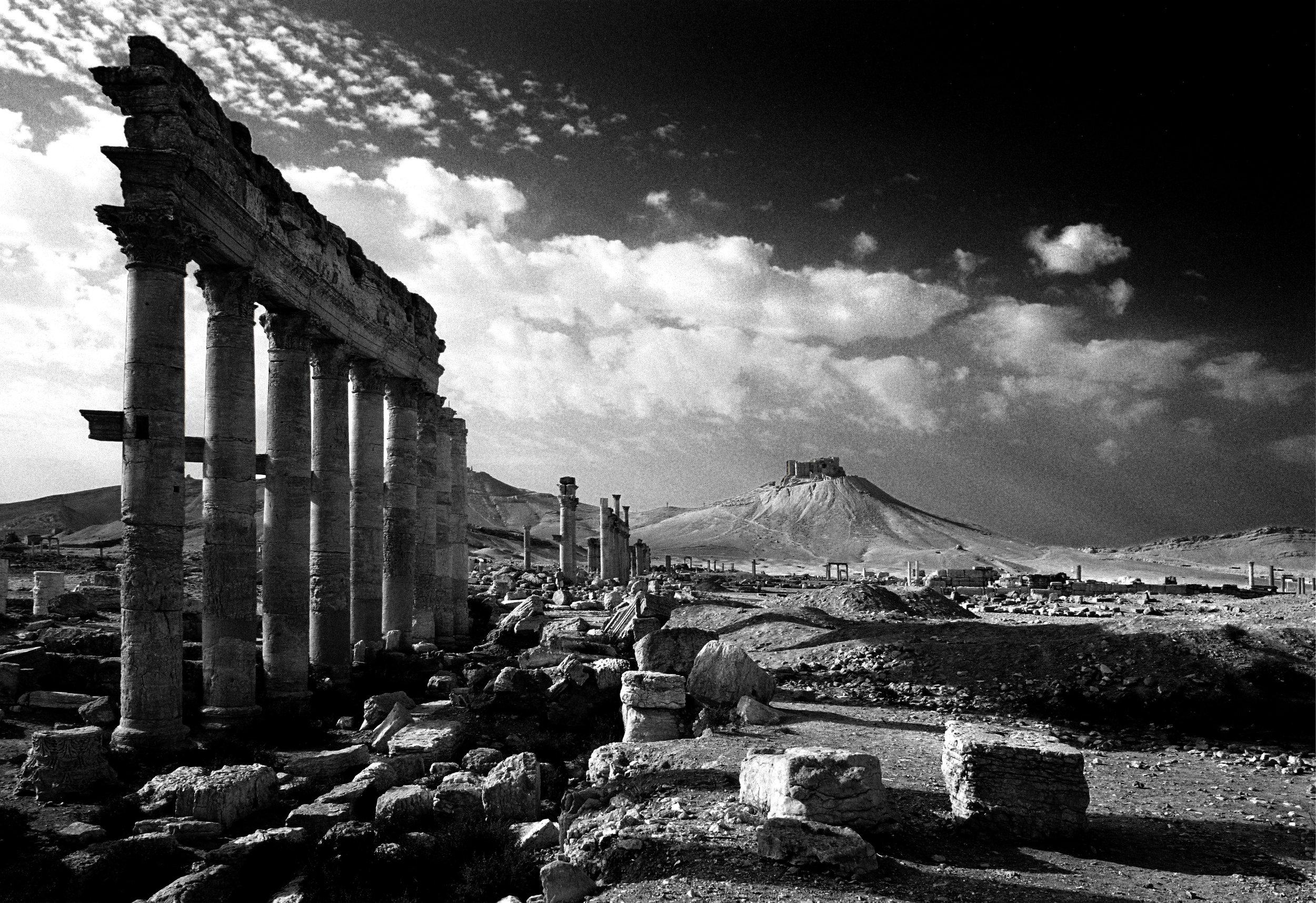 21blev Palmyra.jpg