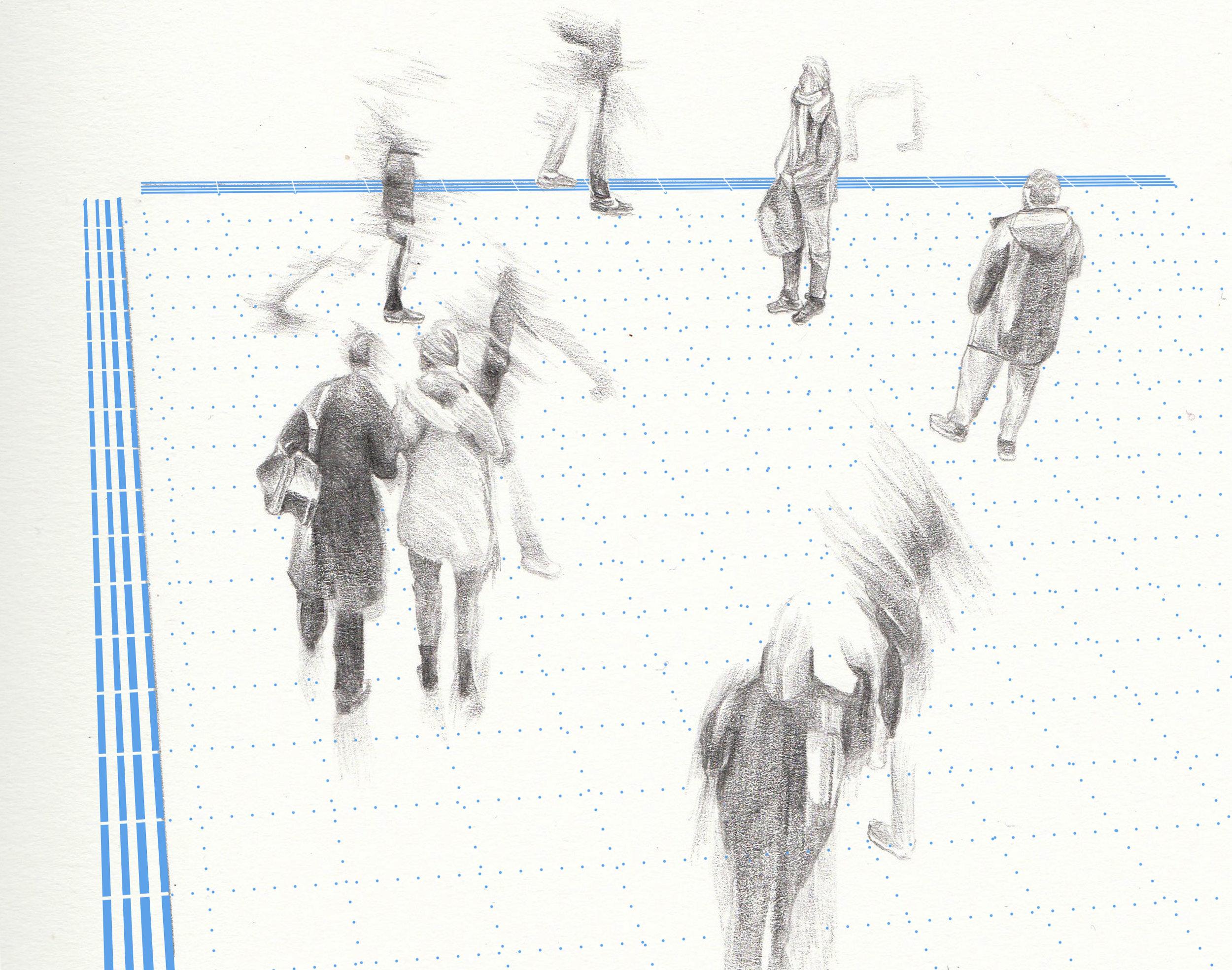 fields of perception.jpg
