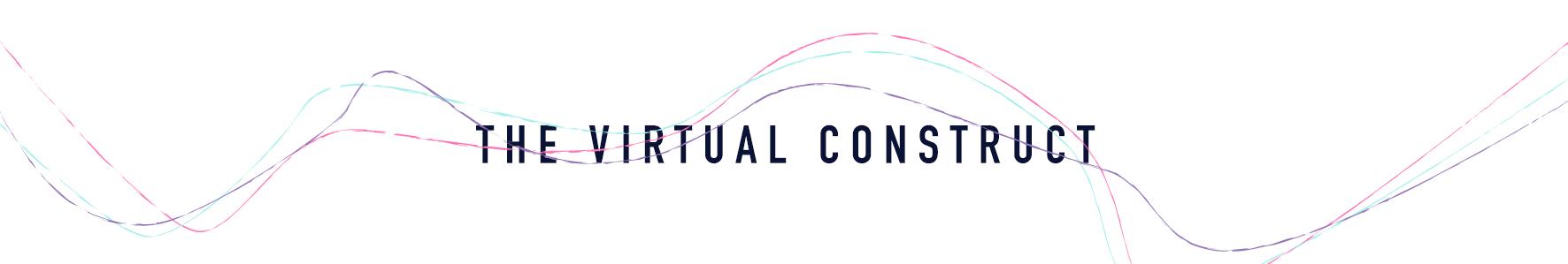 the virtual construct.jpg