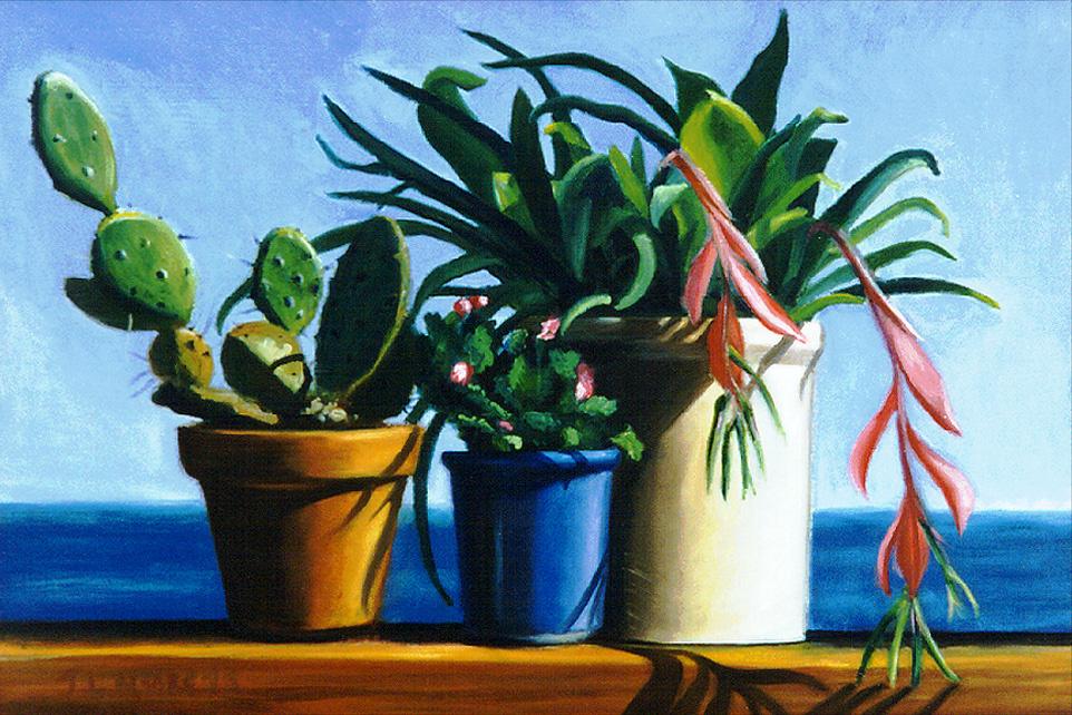 "Christmas Cactuses   16"" x 24"" Oil on Mahogany"