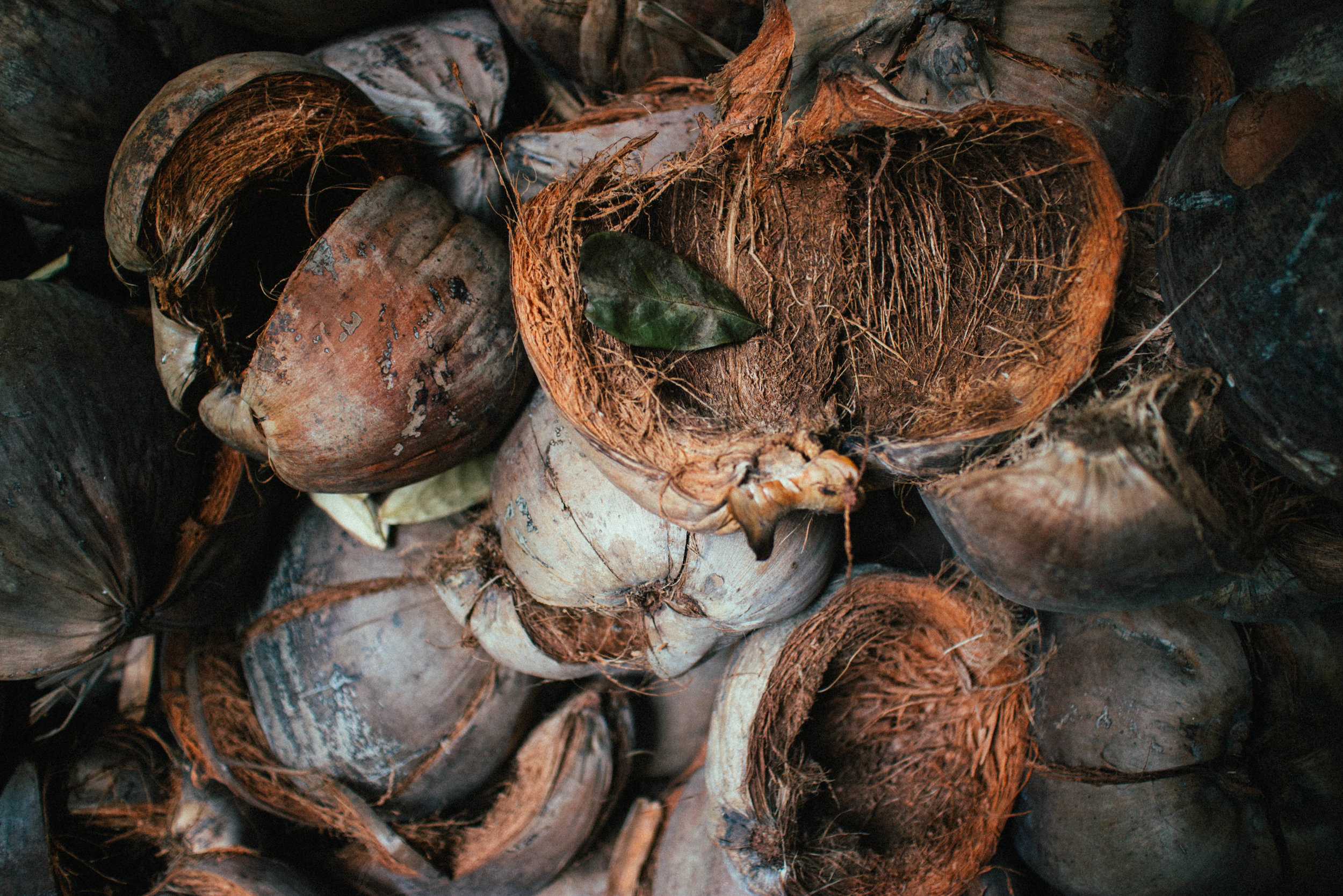 coconut husk to energy